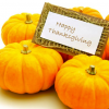 Happy Thanksgiving pumpkins